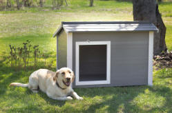 Large Dog House - Canine Cabin