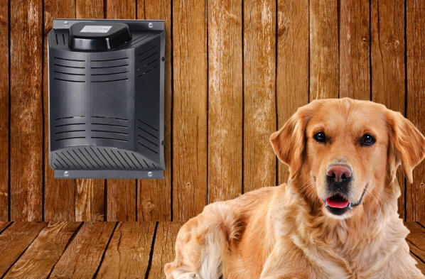 Dog House Heater and Fan