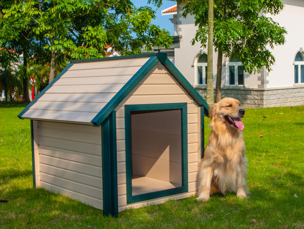 Dog House For Cold And Hot Weather