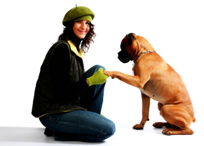 A Better Behaved Dog is Right at Your Fingertips