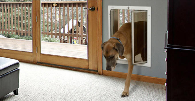 PlexiDor Dog Doors